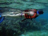 Nadando por todas partes en el Gran Arrecife Maya