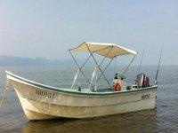 Barco Aromi