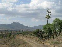 En Las Codornices rancho