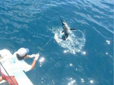 Yacht Rentals Mexico Pesca