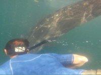 Haciendo snorkel
