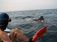 Saliendo del snorkel