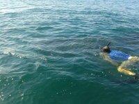 Nosotros te damos para hacer snorkel