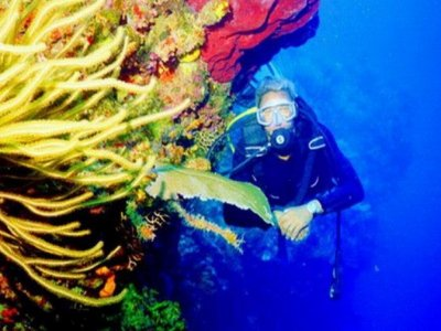 Sea Pro Divers Buceo