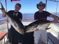Buena pesca en Puerto Vallarta