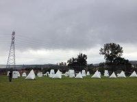 Chimera field