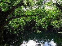 Cenote Angelita, uno de los más famosos de la zona