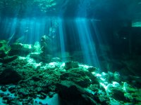 Impresionante Cenote Dos Ojos