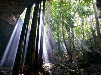 La Selva Maya, un mundo por descubrir