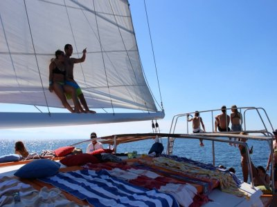 Ally Cat Sailing Charters