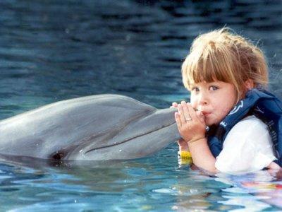 Xcaret Nado con Delfines