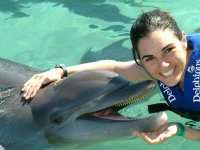 Experience with dolphins