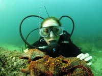 Diving in Acapulco