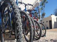tour our bikes on the Malecon Twilight
