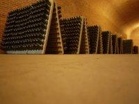 wine tourism in queretaro