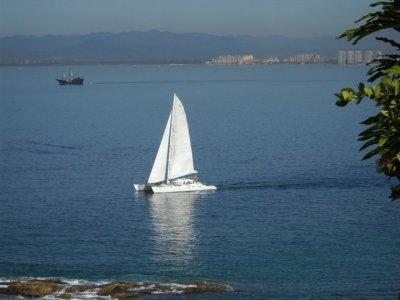 Sayulita Diving Adventures Paseos en Barco