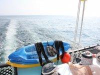 kayaks a bordo