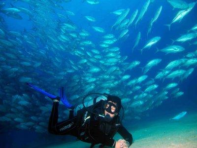 Mar y Sierra Cabo Pulmo