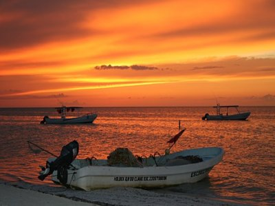 Holbox Collection Pesca