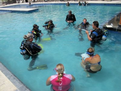 Scuba Diver certification, Playa del Carmen.