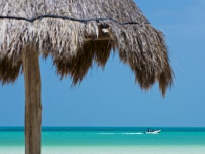 Holbox Collection