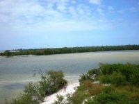 rutas manglares