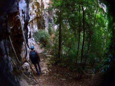 Ecoturismo Sima de las Cotorras Caminata