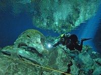 Tour de buceo en cenote