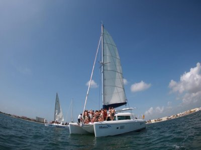 Albatros Sail Away