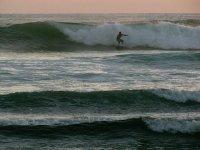 olas de pros