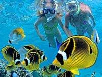 Snorkeleando en pareja