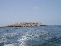 Buceo en Bahía de Banderas