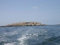 Diving in the Banderas Bay