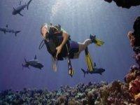 Diving routes