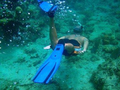 Reef Quest Divers México Snorkel