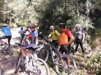 Grupos ciclistas