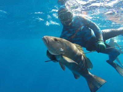 Arpon Spearfishing Playa del Carmen