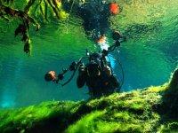 Buceando en un cenote