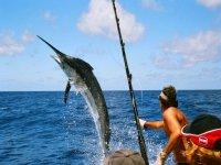Pescando pez espada