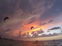 Glide in the sea