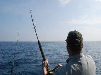 lineas de pesca