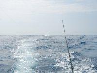 pesca en el caribe