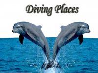 Diving Places S.L de C.V. Snorkel