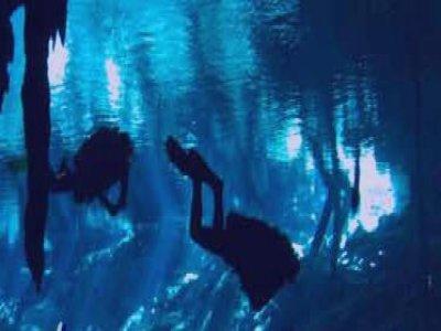 México Azul Expediciones Buceo