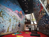 Wall & Climbing School