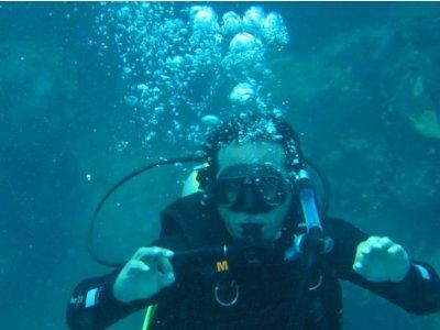 Free Dive Shop