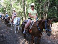 paseos en caballos
