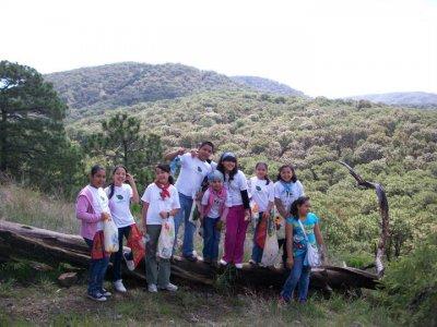 Bosque La Primavera Campamentos Multiaventura