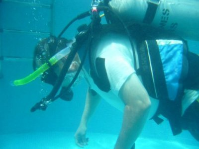 Delfines Divers