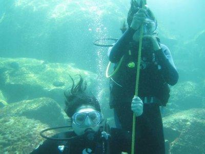 Underwater Acapulco Dive Center
